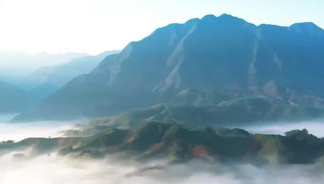 2019清晨最新励志语录,句句充满正能量